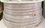 Top 6 loại led dây trang trí ngoài trời ưa chuộng nhất hiện nay