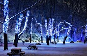 Đẹp không tì vết với 3 mẫu đèn led dây quấn cây ngoài trời