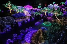 Địa chỉ bán đèn trang trí giáng sinh giá rẻ tại Hà Nội