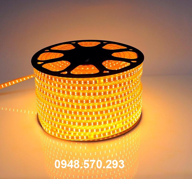 Đèn led dây 2835 2 hàng bóng 220V 3